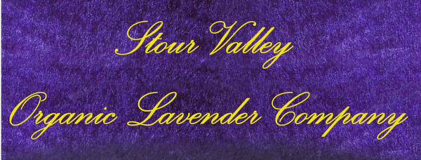 Stour Valley Organic Lavender Company